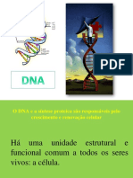 DNA + Sintese proteica (+).pptx