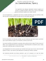 Suelos Humíferos_ Características, Tipos y Animales - Lifeder.pdf