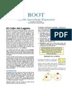 Root expanción