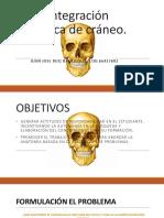 ABP- Integración Temática de Cráneo