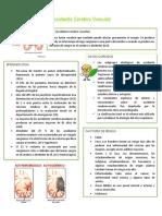 Accidente Cerebro Vascular.pdf
