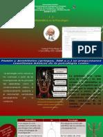 Informática vs La Psicología -Yosleybi T Rojas G -RUBENRAMMSTEIN