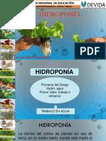 Hidroponía