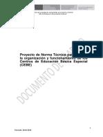 norma-cebes-200218 (1)