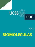 moleculas biologicas