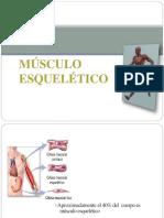 contracciondelmusculoesqueletico-131022171136-phpapp01-convertido.pptx
