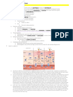 Derm Exam (Lecture Notes)