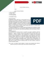 PLAN TUTORIAL AULA - .docx