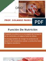 Aparato Circulatorio Prof Solange Pairo Collao
