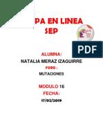 Merazizaguirre_Natalia _M17 S1 AI1Determinísticos o Aleatorios