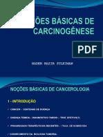 NOÇÕES BÁSICAS DE CANCEROLOGIA 2015