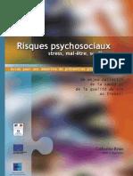 Risk Psycho Guide