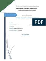Informe Museo de Minerales