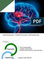 Arterias Cerebrales