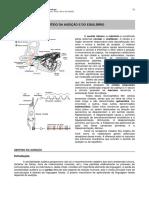 sentidos especiais audição e equilibrio.pdf