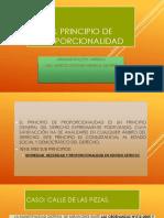 2.1. EL PRINCIPIO DE PROPORCIONALIDAD.pptx