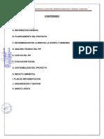 Resumen Ejecutivo Biodigestores Norte