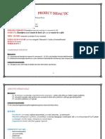proiet_grad_ii_matematicaiiib_pagu_gabriela.docx