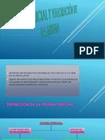 PRUEBA PERICIAL Y VALORACIÓN DE LA MISMA.pptx