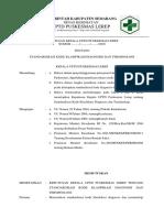 8.4.1.1 SK Standardisasi Kode Klasifikasi Diagnosis dan Terminologi - Copy.docx