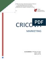 348719220-Cricova-Marketing-Finaleee.docx