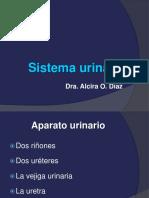 2018 Sistema urinario.pdf