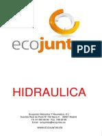 HIDRAULICA ECOJUNTAS.pdf