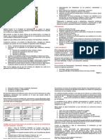 Nutrafol Fertilizante Foliar Banano Sl-1