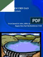 4.. Homeost Urin.en.Id