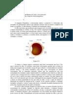 Física - B2 29 O olho humano