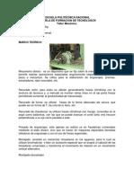 FRESADORA 2.docx
