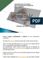 Presentación pnfa