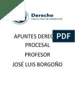 APUNTES DERECHO PROCESAL.docx