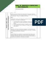 PLAN ANUAL 8 CIENCIAS NATURALES.docx