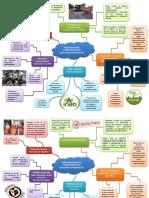 Mapa Mental de Organizaciones Gubernamentales Ejecu