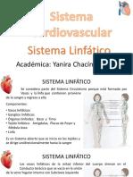 19 Clase de CV 14 Sistema ling