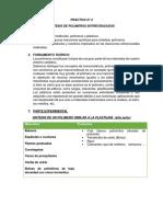 Practica  N° 2 SINTESIS DE POLÍMEROS ENTRECRUZADOS QP - 2018.docx