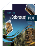 La Deforestación en Guatemala.docx