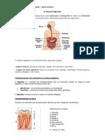 O Sistema Digestivo.docx