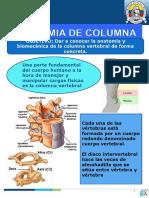 ANATOMIA DE COLUMNA capacitacion diana.ppt