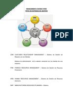 Tipos de Sistemas de Gestion.docx