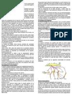 SELECCIONNATURAL.docx