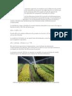 En el caso del riego por aspersión agrícola.docx