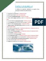 funções sintáticas 5 - correção (2).docx