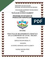 MAGALI GARCIA  INFORME.docx