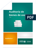 13- Auditoria de Bs.de Uso