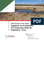 bOFEDALES DE ANDAMARCA ORURO BOLI.pdf