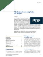02 - Malformaciones congénitas del pulgar.pdf