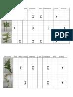 informe plantas