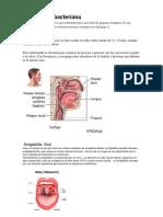 Amigdalitis bacteriana.docx